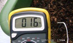 テスターの温度計で土中温度を測る